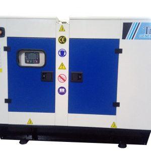 Дизельный электрогенератор Trio R75 (75 kVA) Ricardo Engine